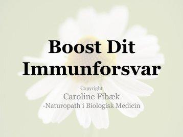 Virus - Caroline Fibæk