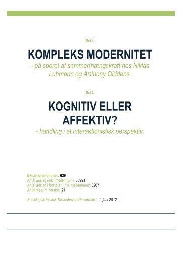 kompleks modernitet kognitiv eller affektiv? - sociologisk-notesblok
