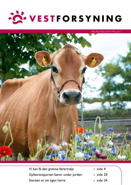 Profilmagasin - maj 2011 - Vestforsyning