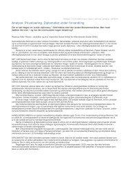 Læse hele analysen her (pdf 53 KH) - DIIS
