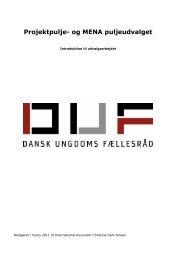 Projektpulje- og MENA puljeudvalget - Dansk Ungdoms Fællesråd