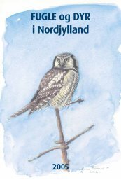 FUGLE og DYR i Nordjylland 2005 - Nordjyllands Fugle