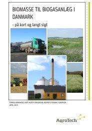 Biomasse til biogasanlæg i Danmark – på kort og ... - Energistyrelsen