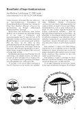 Svampe 32 - Page 3