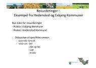 Revurderinger - Eksempel fra Hedensted og Esbjerg ... - EnviNa