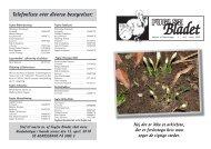 2010 Nr 2 (PDF format) - Fuglse