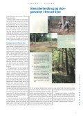 Geologi i skoven, et forskningsprojekt om Draved skov - Geus - Page 7