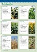 Frø til vildtpleje, dækafgrøder og bier - Page 4
