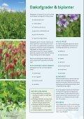 Frø til vildtpleje, dækafgrøder og bier - Page 6