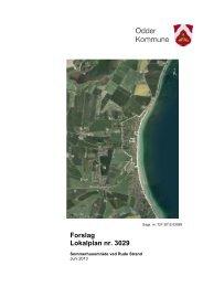 Lokalplanforslaget kan ses her - Odder kommune