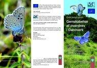 Genskabelse af overdrev i Danmark - Høje Møn - Naturstyrelsen