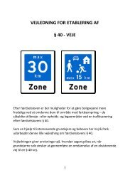 vejledning for etablering af § 40 - veje - Fredericia Kommune