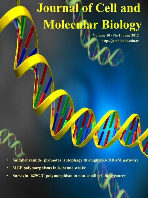 10 1 Full Volume (PDF)(jcmb.halic.edu.tr) - Journal of Cell and ...
