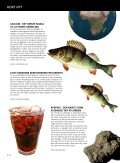 SCIENT - SCIENCE - Københavns Universitet - Page 4