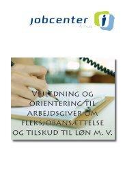 Vejledning og generelle oplysninger (pdf 506 KB) - Aarhus.dk