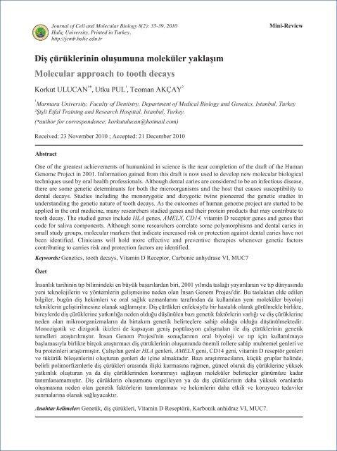 Diş çürüklerinin oluşumuna moleküler yaklaşım Molecular approach ...