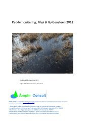 Paddemonitering, Filsø & Gyldensteen 2012 - Aage V. Jensens Fonde