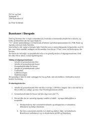 Evalueringskriterier for busslusen i stengade 21 april 2005