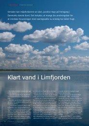 Klart vand i Limfjorden