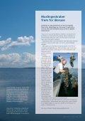 Klart vand i Limfjorden - Page 2