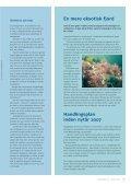 Klart vand i Limfjorden - Page 4