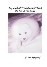 ON TOP OF THE WORLD - Jan Lyngdorf