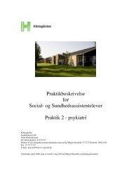 Praktikbeskrivelse - Den Sociale Virksomhed