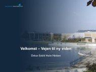 Eskild Holm Nielsen, Dekan ved det Teknisk ... - EnergyVision.dk