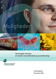 Teknologisk fremsyn om dansk nanovidenskab og nanoteknologi - IVA
