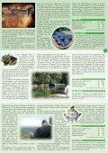 OPERA VELVæRE GASTRONOMI KRYDSTOGT ... - GIBA Travel - Page 7