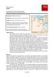 MR-analyse av Egypt