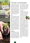 Blomsterfrø 03 DK Internet.pdf - Page 4