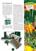 Blomsterfrø 03 DK Internet.pdf - Page 5