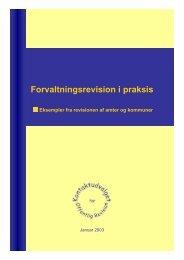 Forvaltningsrevision i praksis – eksempler fra ... - Rigsrevisionen