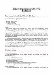 Undervisningsplan matematik (Peter Skjoldborg)