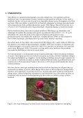 Sandmarkers kultur- og naturhistorie i Nationalpark Mols Bjerge ... - Page 5