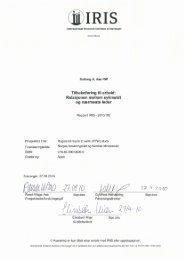 Rapport 2010-102.pdf - IRIS