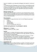 Projekt for dygtige elever nov 2007 - Tjørnelyskolen - Page 5