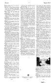 hårfugle ibenholt - Rosekamp - Page 6