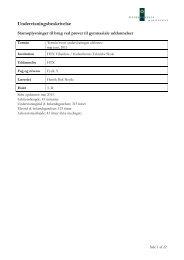Undervisningsbeskrivelse - Københavns Tekniske Skole