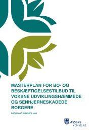 masterplan for bo- og beskæftigelsestilbud til voksne ... - Hjernekassen