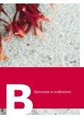 Kjernesett av indikatorer - European Environment Agency - Europa - Page 3