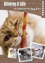 Aktivering af katte - Min Ven Katten