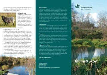Glumsø Skov - Naturstyrelsen