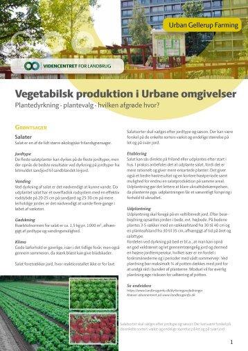 Vegetabilsk produktion i Urbane omgivelser - LandbrugsInfo