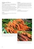 Vegetabilsk produktion i Urbane omgivelser - LandbrugsInfo - Page 2