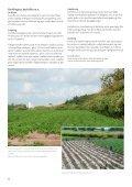 Vegetabilsk produktion i Urbane omgivelser - LandbrugsInfo - Page 4