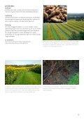 Vegetabilsk produktion i Urbane omgivelser - LandbrugsInfo - Page 5