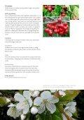 Vegetabilsk produktion i Urbane omgivelser - LandbrugsInfo - Page 7