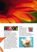 Bliv blomsterhandler med diplom fra Chrysal Vind en rejse til ... - Page 7